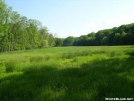 Open Grassland in NY by Cookerhiker in Views in New Jersey & New York