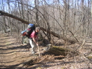 Clearing Waterbars On Hightop Mountain, Shenandoah Np by Cookerhiker in Maintenence Workers