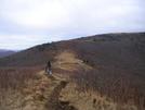 Scarf Hiking Roan Highlands