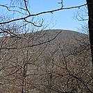 Springer Mountain