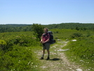 Starting Hike In Dolly Sods Wilderness by Cookerhiker in Other Trails
