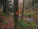 Orange Blaze Of Susquehannock Trail, Pa by Cookerhiker in Other Trails