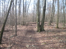 Trail In Maryland by Cookerhiker in Trail & Blazes in Maryland & Pennsylvania