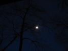 Moon At Ed Garvey Shelter by Cookerhiker in Views in Maryland & Pennsylvania