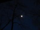 Moon At Ed Garvey Shelter