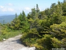 Trail on West Baldpate by Cookerhiker in Trail & Blazes in Maine
