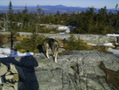 Sany1089 by DLANOIE in Trail & Blazes in Maine