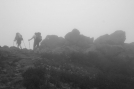 Buzzard Rock in a fog