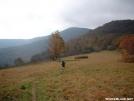 Silver Dome hikes near Doll Flats by cabeza de vaca in Trail & Blazes in North Carolina & Tennessee