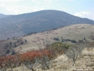 Jane Bald looking toward Engine Gap by cabeza de vaca in Trail & Blazes in North Carolina & Tennessee