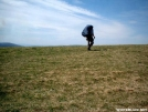 Traversing Max Patch by cabeza de vaca in Views in North Carolina & Tennessee