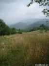 Meadow between Sam\'s Gap and Big Bald 28JUL2005 by cabeza de vaca in Trail & Blazes in North Carolina & Tennessee