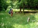 Princess Leah at Shelton Grave Site 25JUN2005 by cabeza de vaca in Section Hikers