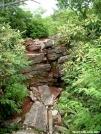 A climb near Blackstack Cliffs 26JUN2005 by cabeza de vaca in Views in North Carolina & Tennessee