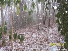 Snow on the AT by SGT Rock in Trail & Blazes in North Carolina & Tennessee