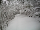 Snow In The Smokies - January 7th. by SGT Rock in Other Trails