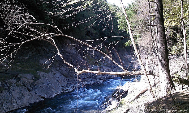 Queeche gorge in VT