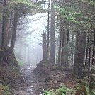 Great Smoky Mountains by duncanranger in Trail & Blazes in North Carolina & Tennessee