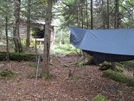 Hammock Camp At Boyce Shelter, Long Trail by Rough in Long Trail