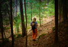 Forest by shaman in Day Hikers