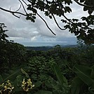 El Yunque Rain Forest in Puerto Rico by Ricky&Jack in Day Hikers