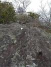 Climbing Albert Mountain