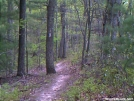 Picture_002 by slowpoke in Trail & Blazes in Virginia & West Virginia
