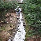 Frozen trails