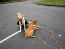 Sasha & Suzi by Phreak in Members gallery