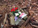 Meredith Emerson Memorial by Phreak in In Memory of: