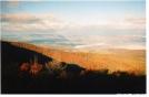 Fall in SNP by Programbo in Views in Virginia & West Virginia