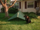 Angus And Eureka Fly by aaroniguana in Tent camping