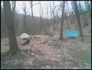 lugicanestentandmyhammockrockyrunshelter by johnnyblisters in Hammock camping