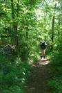 BirdonAT by Turtle2 in Thru - Hikers