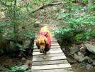 Jackson by Turtle2 in Thru - Hikers