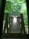 Tye River Bridge by Turtle2 in Trail & Blazes in Virginia & West Virginia