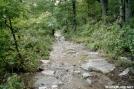 Slippery Slope by Buckingham in Trail & Blazes in New Jersey & New York