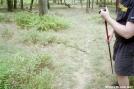 Stupid Snake
