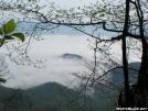 Smokey Mountain View