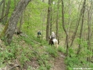 Riders on the trail by LovelyDay in Trail & Blazes in North Carolina & Tennessee