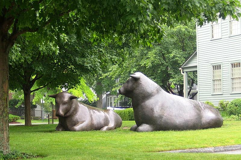 Bronze Bulls