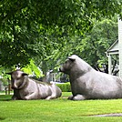 Bronze Bulls by LovelyDay in Connecticut Trail Towns