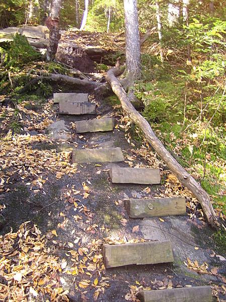 Steps on Moosilauke