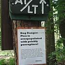 Doggie Danger