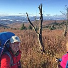Mount Rogers via Massie Gap Hike by Kaptainkriz in Trail & Blazes in Virginia & West Virginia