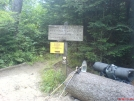 Look out for Bears by SGT Rock in Trail & Blazes in North Carolina & Tennessee