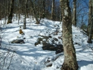 Snowy Trail Up Roan Mtn by Blissful in Trail & Blazes in North Carolina & Tennessee