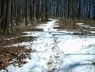 Slushy Trail To Damascus by Blissful in Trail & Blazes in North Carolina & Tennessee