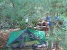 Paul Bunyan Stealths by Blissful in Thru - Hikers