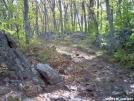 Trail by FlyPaper in Trail & Blazes in Virginia & West Virginia